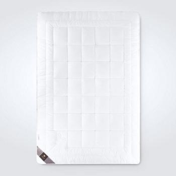 Одеяло летнее Air Dream Premium