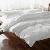 Комплект постельного белья из однотонного льна Жемчуг