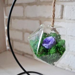 Стабилизированная роза в колбе подвесной со мхом
