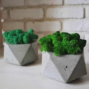 Стабилизированный мох в бетонном кашпо Кристалл Ровный