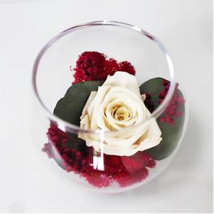 Композиция Стабилизированная роза со мхом и эвкалиптом