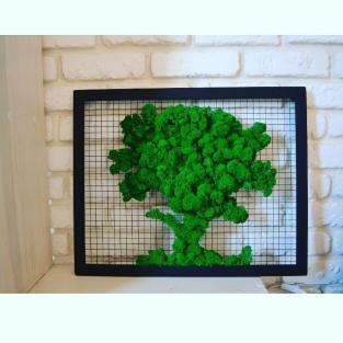 Фитокартина Дерево 50х30 см (стабилизированный мох)